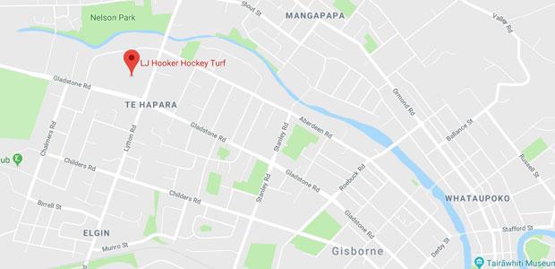 LJ Hooker Hockey Turf